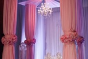 Backdrops/Arches/Canopies